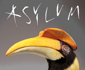 Click to view Asylum Models & Effects